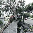Napoli ferita, scuole chiuse e lite sulle allerte meteo: ira de Magistris