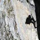 Valle Camonica, alpinista cade nel dirupo e muore