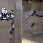 Ecco il cane-robot, quando la tecnologia supera la serie tv...