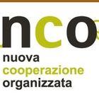 «Nco», in Campania nasce l'«Amazon anticamorra»