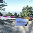 Monte Faito, l'ultimo scempio: alberi giù per fare la strada abusiva