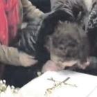 L'addio a Giuseppe, il bacio di Valentina tra rabbia e gelo