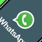Addio alle chat dei genitori: il Comune vieta i gruppi Whatsapp nelle scuole