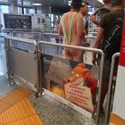 Nudo in coda all'aeroporto di Malpensa: interviene la polizia Foto