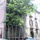 Verde incolto, edifici a rischio crollo: a Caserta piovono calcinacci