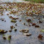 Meteo: estate addio, è autunno in anticipo