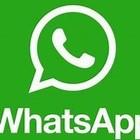 WhatsApp, il nuovo aggiornamento non piacerà agli utenti: arriva la pubblicità