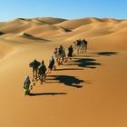 Il Sahara era popolato e ricco di vegetazione