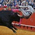 Corrida a Saragozza, torero in fin di vita