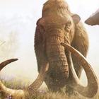 Dal mammut alla tigre della Tasmania, taglia-incolla Dna per lo zoo degli animali estinti