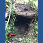Scoperto un covo di latitanti nascosto dalla vegetazione