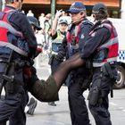 Australia, vegani in rivolta Il premier: ci danneggiano