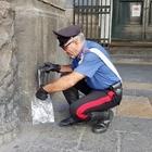 Scooter in fuga dal posto di blocco, due pistole davanti al San Carlo