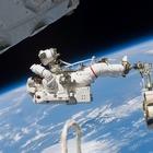 Nasa, insetti spaziali attaccano la stazione