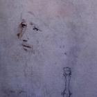 Ritratto sconosciuto di Leonardo nella mostra a Buckingham Palace