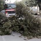 Vento forte, Mastella chiude scuole e parchi a Benevento