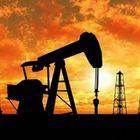 Petrolio a 80 dollari: prima volta dal 2014