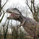 Dinosauri, la tesi dello studio rivoluzionario: la vera ragione per cui si sono estinti