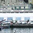 Napoli, caos al Circolo Posillipo: «Votiamo scheda bianca»