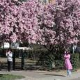 Meteo, previsioni per il primo weekend di primavera. Ma lunedì il risveglio è gelido