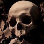 Egitto terra di sorprese: scoperta tomba di 3500 anni fa